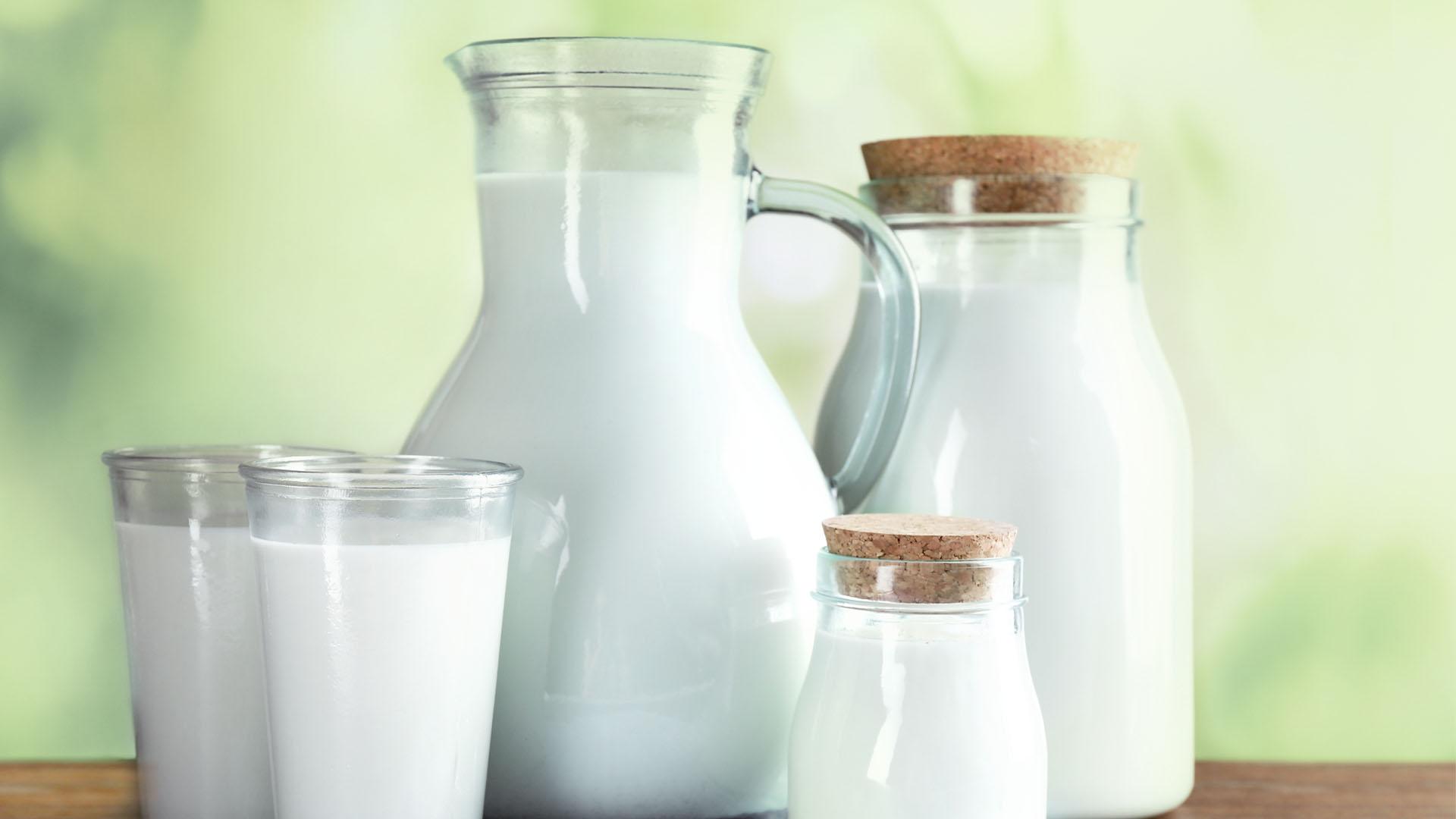 Lactose Test
